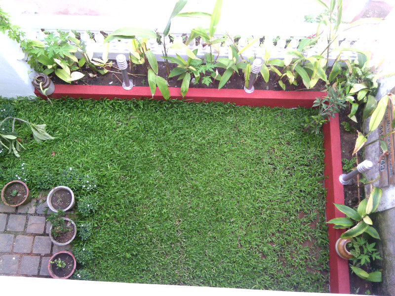 homestay in fort cochin with garden and lawn nathans holiday home