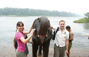 kodanad elephant center kerala